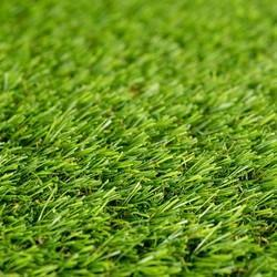 Artificial Grasses In Hyderabad Telangana Artificial