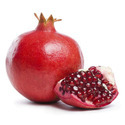 Pomegranate Cold Storage Rental Services