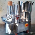 Cube and Sticks Shaped Vegetable Cutting Machine