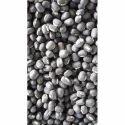 Black Gram Urad Seed