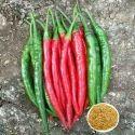 Ashwini F1 Hybrid Chilli Seeds, For Cultivation