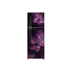 GL-F282RPDX 255 Ltr LG Refrigerator