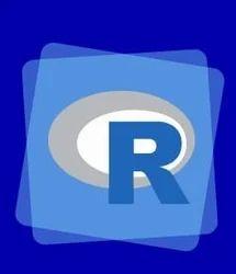 R Language Courses