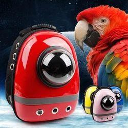 Bird Accessories Pet Bird Carrier Importer From Chennai