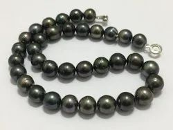 Tahitian Pearl Necklace Good Luster