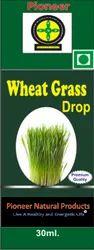 Wheat Grass Drops