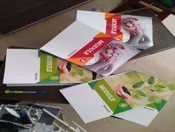 70 Gsm B/W Brochure Printing Service
