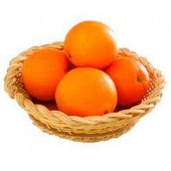 Orange Cold Storage Rental Services