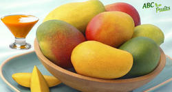 Yellow Organic Mango Concentrate, Packaging Type: Barrel, Packaging Size: 215 Kgs