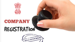 15 Days Consultant Company Registration, Business Consultancy, Professional Experience: Well Experience