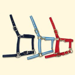 35mm Horse Halters
