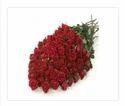 Eternal Desire Red Flower