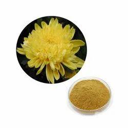 Chrysanthemum Morifolium Extract
