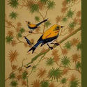 Greeting Card Birds Oriole