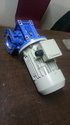Adept Motors Worm Gear Reducer