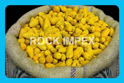 Golden Yellow Salem Turmeric Bulb