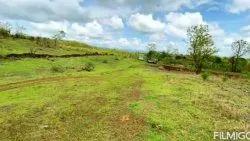 Buy Land In Pali