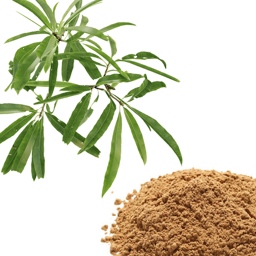 Powder Brown White Willow Bark Extract, For Medicinal, Packaging Type: 25  Kg Hdpe Drum, Rs 4000 /kg | ID: 21768133848