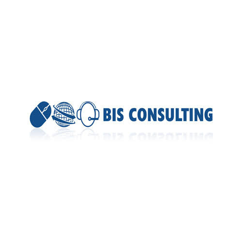 BIS Consulting Services