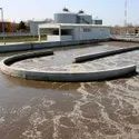 Microbial culture For Textile Industrial Wastewater Treatment
