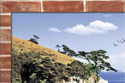 Titonic Ceramic 3d Wall Tiles, Size: 250 X 375 Mm