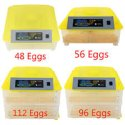 200 Eggs Incubator