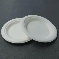 Bio 11 Inch Plate