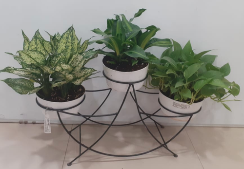 3 Pot Round Metal Stand