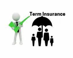 Term Insurance Plan Services