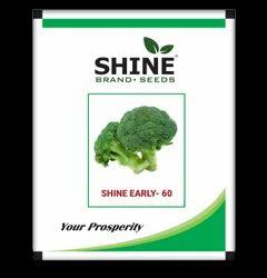 Shine Brand Seeds Hybrid Broccoli Seeds - Shine Early - 60, Usage: Farming