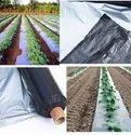 Agriculture Plastic Film