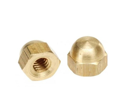 Bhumi Brass & Alloy Brass Hex Nut
