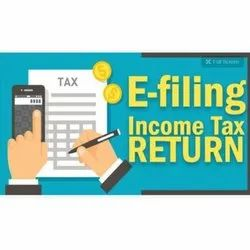 Professional Income Tax Services, in Client Side, Company