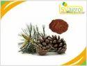 Pinebark Extract