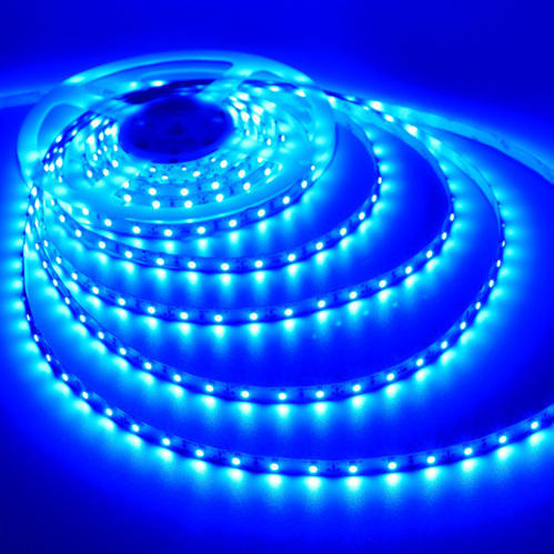 Blue flexible led rope light at rs 1450 roll light emitting diode blue flexible led rope light aloadofball Choice Image
