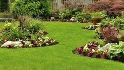 Low Maintenance Landscaping Services