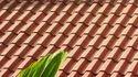 Decoratieve Roof Tiles