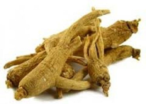 American Ginseng Extract, Packaging Type: Polybag, Pack Size: 1kg, Rs 2100  /kg   ID: 20010126362