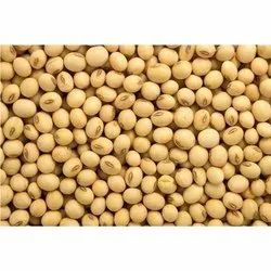Natural Dried Soybean Seeds, High in Protein