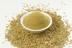 Coriander Extract Powder, Packaging Type: HDPE Drum, Packaging Size: 10 to 25 kg