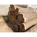 Liptis Wood Transportation