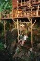 Tree House Cottage Construction Service