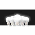 Aluminim LED Bulb