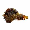 Guggul Extract (CommiphoraWightii) 2.5 % Guggulsterone