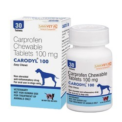Carodyl( Carprofen Chewable) 100mg Tabs