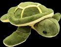 65 Cms Tortoise