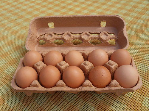 Desi Egg Wholesale Trader from Pinjore