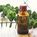 Natural Essential Eucalyptus Oil