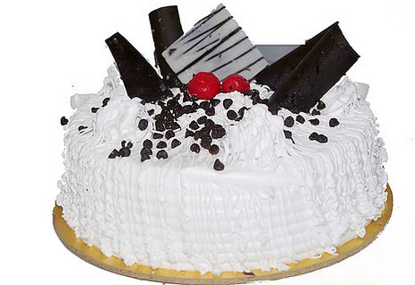 vanilla cake 500x500