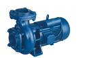 Mechanical Seals Motor
